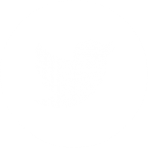 Social Media Profile
